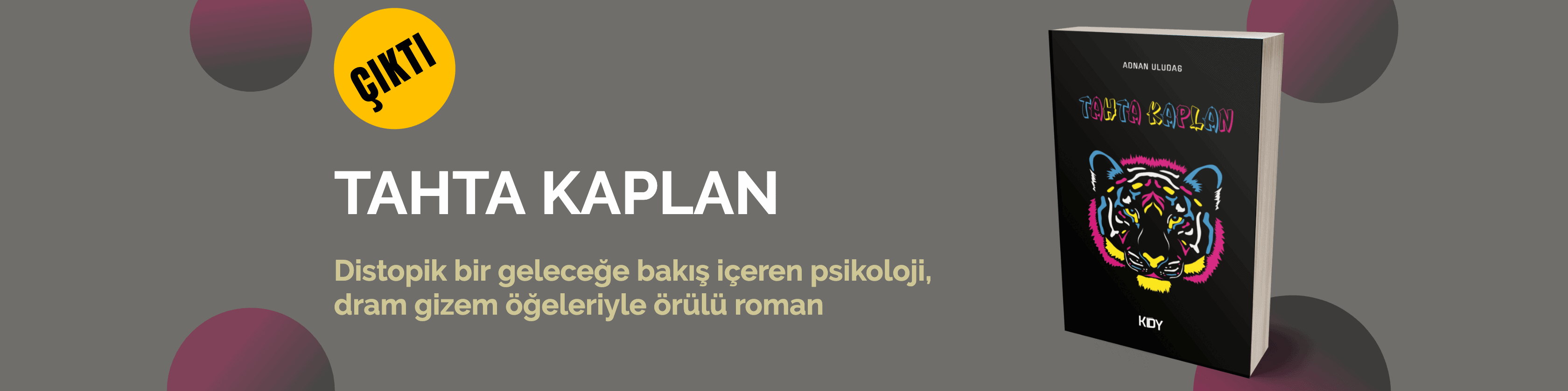 Tahta Kaplan